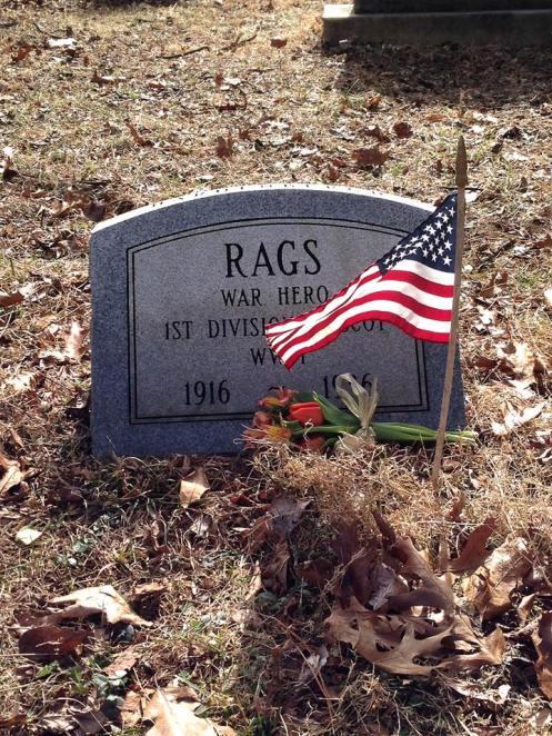 Rags the war dog 3