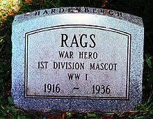 Rags the war dog